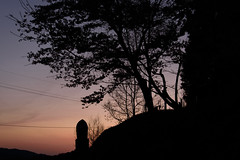 53Butsuryuji Temple (anglo10) Tags: sunset japan cherry temple