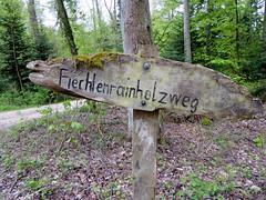 a walk in the forest- a tongue twister.... (Marlis1) Tags: sign forest switzerland wegweiser reinach marlis1 panasonictz71