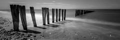Un penchant pour mon voisin (pierrelouis.boniface) Tags: beach water canon blackwhite eau plage