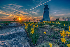 Port Sunset (mary-lee.) Tags: sunset lighthouse pier spring daffodils portdalhousie