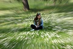 zoom daisies (paolo agostini) Tags: parco daisies ferrara prato margherite massari