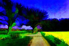 under a blue sky (j.p.yef) Tags: trees germany way landscape digitalart felder bluesky landschaft bume weg yef velmede peterfey jpyef