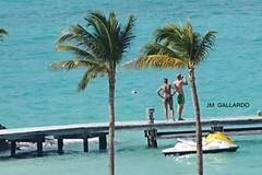 Gente y palmeras - Quintana Roo (Polycarpio) Tags: blue sea woman man verde green water azul palms mar human bikini cancun caribbean caribe quintanroo