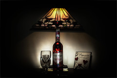 Need this - day 4, (Nigel Fox (insignia50)) Tags: light glass lamp bottle wine
