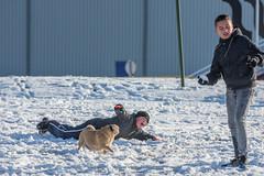 20160116-3184 (Sander Smit / Smit Fotografie) Tags: winter sneeuw delfzijl sneeuwpret slee winterweer