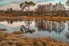 Tulla Winter (3) (Shuggie!!) Tags: trees winter snow mountains water pine reflections landscape scotland morninglight highlands williams hills karl grasses birch hdr lochtulla blackmount zenfolio karlwilliams