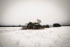 Empty (BryanNewland) Tags: winter building abandoned farmhouse farm empty oldhouse serene openspace upperpeninsula snowscape saultstemarie yooper puremichigan soomichigan dasoo