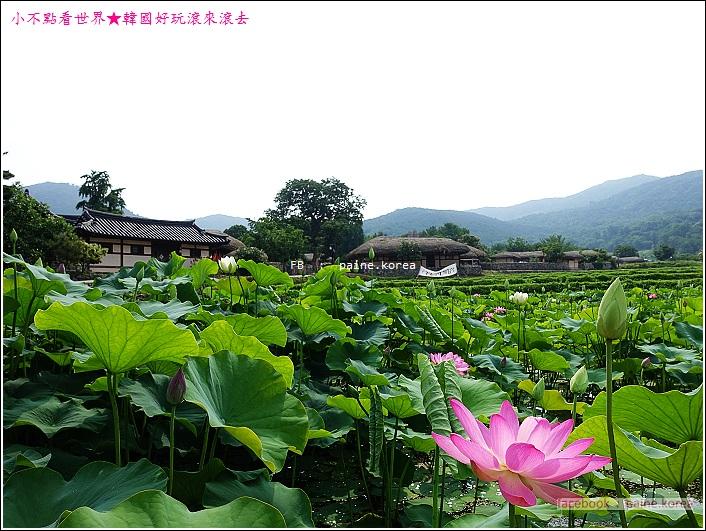 牙山外巖民俗村 (14).JPG