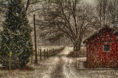 Snowing-3 (desouto) Tags: trees winter sky snow nature barn fence landscape hdr