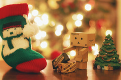 Danbo's Christmas holidays . 4/52 (Tiziano Caviglia) Tags: christmas xmas decorations lights christmastree cardboard kawaii luci threekingsday natale epifania befana alberodinatale yotsuba danbo 12thnight addobbi danboard danbolove
