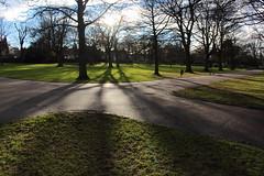 Shadows in the Park,Victoria Park,Aberdeen_feb 16_70 (Alan Longmuir.) Tags: shadow victoriapark aberdeen grampian watsonstreet shadowsinthepark