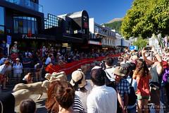 20160206-07-Running of the Wools crowd (Roger T Wong) Tags: city travel newzealand summer people sheep crowd merino nz southisland otago queenstown 2016 sony2470 rogertwong sel2470z sonyfe2470mmf4zaosscarlzeissvariotessart sonya7ii sonyilce7m2 sonyalpha7ii runningofthewools
