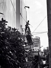 A Clean Sweep (jcbkk1956) Tags: street blackandwhite man thailand mono high bangkok platform brush safety cleaning thai worker suspended cleaner broom hoist thonglo