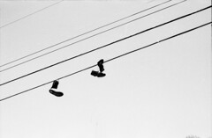 (youngkurama) Tags: 35mm blackwhite shoes florida telephone wires fim hanging tally 2016 timespace