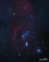 Orion Widefield (kevin-palmer) Tags: longexposure blue winter red sky black yellow night dark stars illinois space stack clear nebula astrophotography orion betelgeuse rigel astronomy february starry 2016 barnardsloop horseheadnebula bellatrix orionsbelt saiph bannermarsh deepskystacker statewildlifearea astrometrydotnet:status=solved tamron2470mmf28 lambdaorionis ioptronskytracker nikond750 astrometrydotnet:id=nova1464570