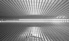 World Trade Center Transportation Hub, Santiago Calatrava Oculus, March 2016 (notmydayjobphotography) Tags: world nyc newyorkcity station architecture train path center wtc trade oculus santiagocalatrava march2016 worldtradecentertransportationcenterhub