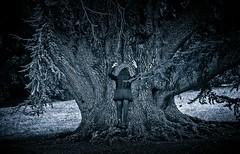 you have to get yourself embrace... (sermatimati) Tags: city trees light sunset shadow portrait bw white black como hot love nature make up dark giant nude twilight nikon hug tramonto darkness dusk good bare magic grow evil charm squeeze shade wife gloom witches fotografia grip embrace piping bianco lombardia nero amore hold pinch sera strega dimness gloaming selfie blackness grasp moglie emozioni tighten scaling fotografare clench murkiness abbracciare sermatimati