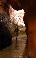 Wading (Dru!) Tags: usa wet water creek ut sandstone stream desert hiking canyon hike hiker slot uta escalante wading holeinthewall utahtrip canyoneering coloradoplateau seepage chockstone fortymile fortymilegulch fortymilecanyon