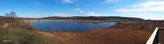 From the Tower   M4109179_0_1_2_3stitchSM (Preselector) Tags: rspb leightonmoss suttoncoldfieldrspb
