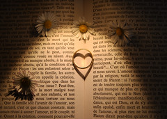 Coup de coeur... (NUMERIK33) Tags: amour fidélité livre fleur bague bonheur explore numerik33