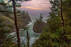 Misty Cove on the Oregon Coast (Cole Chase Photography) Tags: ocean mist rain oregon canon coast spring pacificnorthwest 5d oregoncoast brookings markiii samuelhboardmanstatepark samuelhboardmansceniccorridor