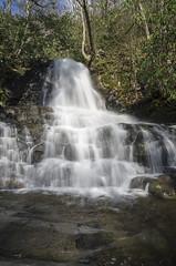 IMGPE19137_Fk - Great Smoky Mountain National Park - Laurel Falls (David L. Black) Tags: us unitedstates tennessee waterfalls sevierville greatsmokymountainsnationalpark