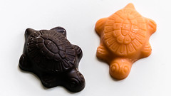 Two Turtles in April (Jump83) Tags: two orange chocolate macromondays