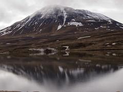 Iceland (boncey) Tags: iceland lenstagged olympus ep3 40150mm olympusep3 olympuspenep3 camera:model=olympuspenep3 lens:make=olympus olympus40150f4056 lens:model=olympus40150f4056 photodb:id=23487