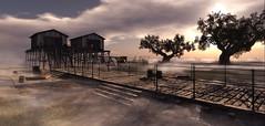 Lead me there (kalia harva) Tags: pier coastal boatshed hellshaven
