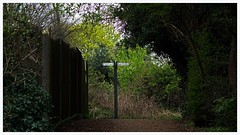 Signpost (Happydays 65) Tags: walking path pedestrian elements signpost scrub hertfordshire hertford jepg sonyrx10 happydays65