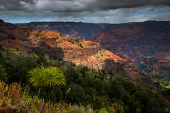 Waimea Canyon Overlook (Eric Gail: AdventuresInFineArtPhotography) Tags: california ca nature photoshop canon landscape photo interestingness interesting photographer picture canyon explore software kauai waimea nik lightroom adjust infocus cs6 70d topazlabs ericgail canon70d 21studios