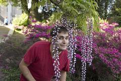 Biltmore (jackie.moonlight) Tags: estate purple biltmore blooms wisteria pergola