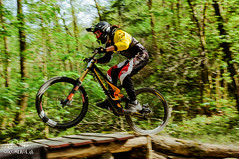 D-2-91 (CocomeroLab) Tags: wood italy bike sport race ride natur downhill gravity bologna bycicle loiano