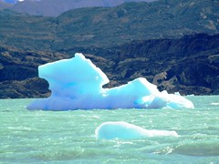 Iceberg on Lago Argentino (magellano) Tags: horse patagonia lake ice argentina pareidolia lago iceberg cavallo argentino ghiaccio