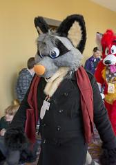_DSC0286 (Acrufox) Tags: midwest furfest 2015 furry convention december hyatt regency ohare rosemont chicago illinois acrufox fursuit fursuiting mff2015