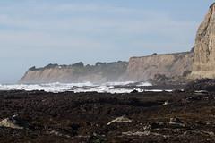 IMG_7982 (armadil) Tags: beach scenic beaches lowtide tidepools tidepool mavericks californiabeaches
