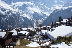 Mrren (Silvia Prez Jaime) Tags: suiza nieve pueblo montaa lauterbrunnen interlaken mrren cantndeberna