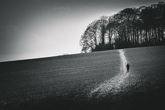 lonely walk