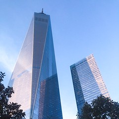 Looking up in NYC Nov 2014 (lindsaycarr1) Tags: nyc newyorkcity autumn lookingup thebigapple freedomtower