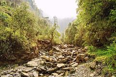 ASJ_2853_f (Joshi Anand) Tags: morning nepal india forest trek nikon stream nef cloudy trail d750 handheld abc fx pokhara pune joshi anand annapurnabasecamp anandjoshi