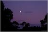 Moon in purple sky, just after sunset... (lichtspuren) Tags: summer sky moon 20d night canon eos mond purple nacht sommer himmel nrw münsterland violett tecklenburgerland