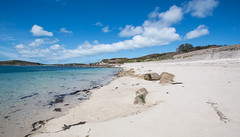 IMG_6586 (Chris Wood 1954) Tags: tresco islesofscilly