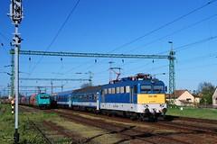 V43.1146 (Tams Tokai) Tags: train eisenbahn railway zug loco locomotive bahn railways lokomotive lok vonat vast