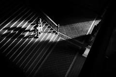 Hacia la luz (Antonio Jimnez Falcn) Tags: street light blackandwhite espaa sun white black blancoynegro blanco luz beautiful stairs photography grey gris photo blackwhite calle sevilla spain europa europe fuji foto negro streetphotography seville andalucia escalera espana fujifilm streetphoto fotografia andalusia escaleras fotography xseries callejera shn xphotographer fujista fujistas fujix30 fujifilmx30 fujifimlxseries