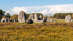 Carnac (quibe5675) Tags: france bretagne menhirs morbihan carnac dolmens anctres alignements megalitic mgalithes spultures
