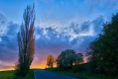 What's behind the horizon? (Petr Horak) Tags: road light sunset sky sun color tree nature field grass sunshine clouds landscape evening outdoor horizon foliage czechrepublic bohemia hdr