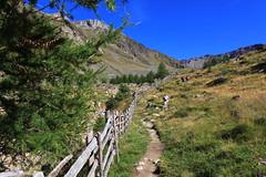 Aufstieg zum Similauntal (uwelino) Tags: ca italien italy alps amazing europa europe sommer glacier adventure juli alpen wandern texel südtirol altoadige schnalstal 2015 vinschgau trakking spectacularlandscape ötzi vernagt schnals texelgruppe similaun