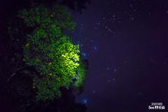 LIMONES Y ESTRELLAS (denisfm89) Tags: sky nature night america stars lemon guatemala sony estrellas alpha limon elmaizgt