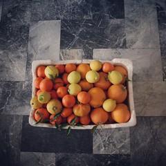 tangerine (iyad LA) Tags: stilllife orange tangerine square eos still lemon mandarin oranges lime navel instagram
