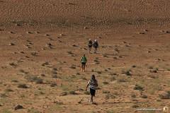 3-Oman-Desert-Marathon-Day-5_3017